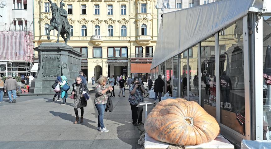 Na glavnom zagrebačkom Trgu izložena bundeva od 580 kilograma