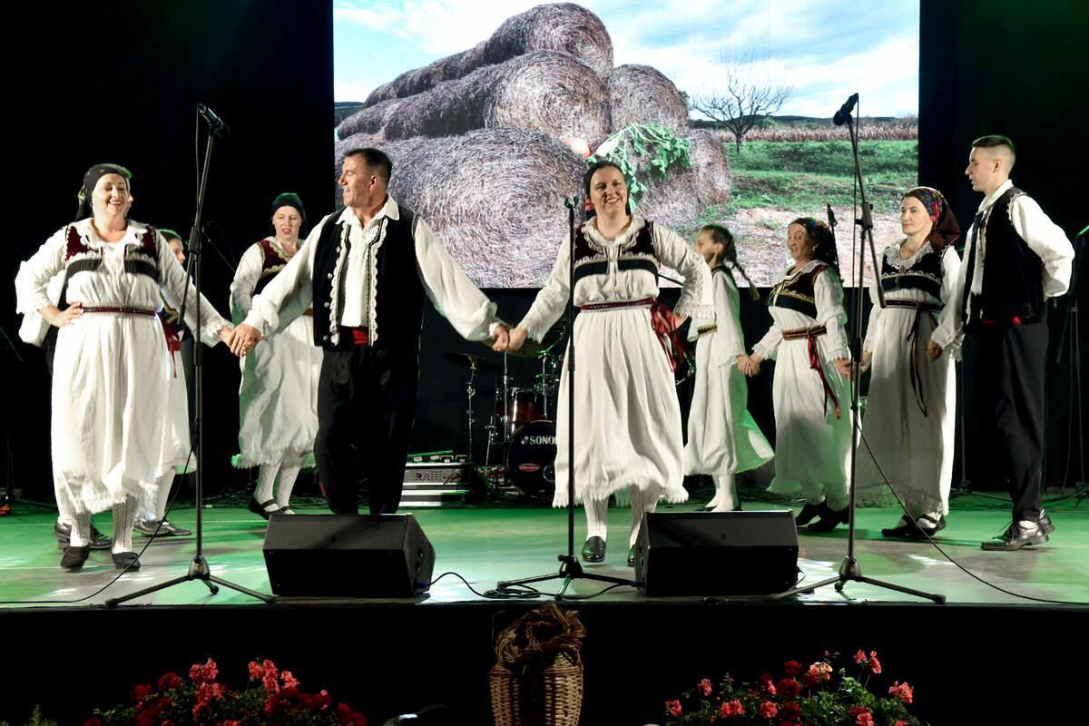 Povodom proslave Lukova u Novskoj održani tradicionalni Folklorni susreti